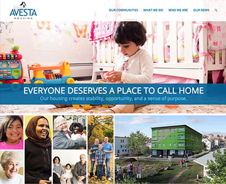 Avesta Website Design